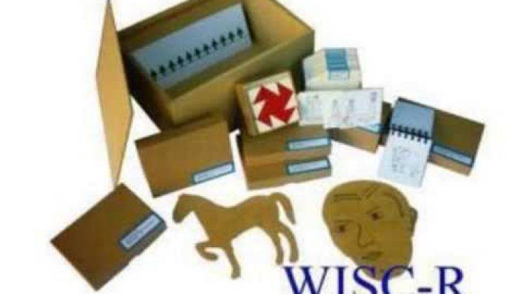 WİSC-R Zeka Testi Uygulayıcı Eğitimi Sertifika Programı